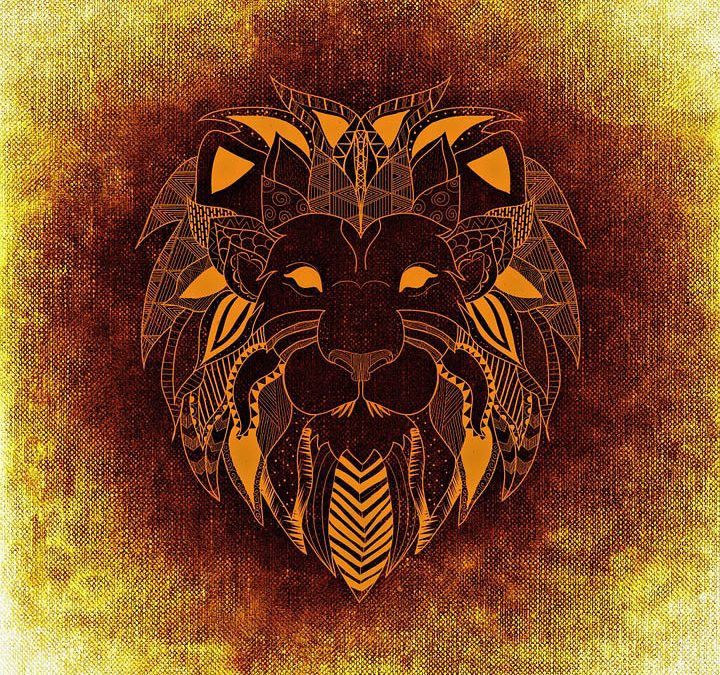 The Lion People Sirius Transmission Wake Up Starseeds The