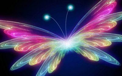 The Butterfly Transmission: Let Go, Enter the Void, Awaken!