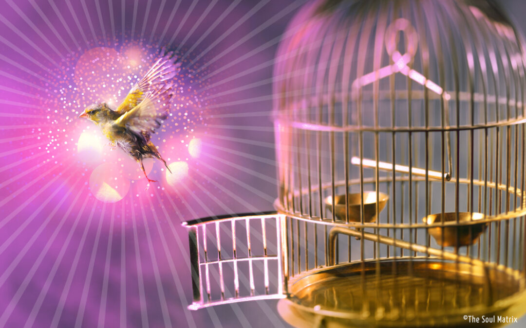 ASCENSION NEWS. SPIRITUAL AWAKENING AND UPGRADING THE EGO.