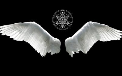 Black Angelic Fire Transmission: Clearing Toxic Lower Energies in Your Physical Vehicle.
