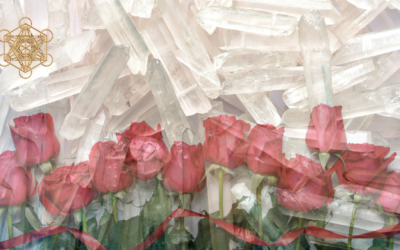 Super Quick Crystal-Rose Shield Meditation: Neutralising Negative Energetic Projections.