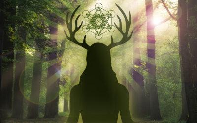 The Wild God Transmission: Embracing the Shaman, Warrior, Lover, Sage.